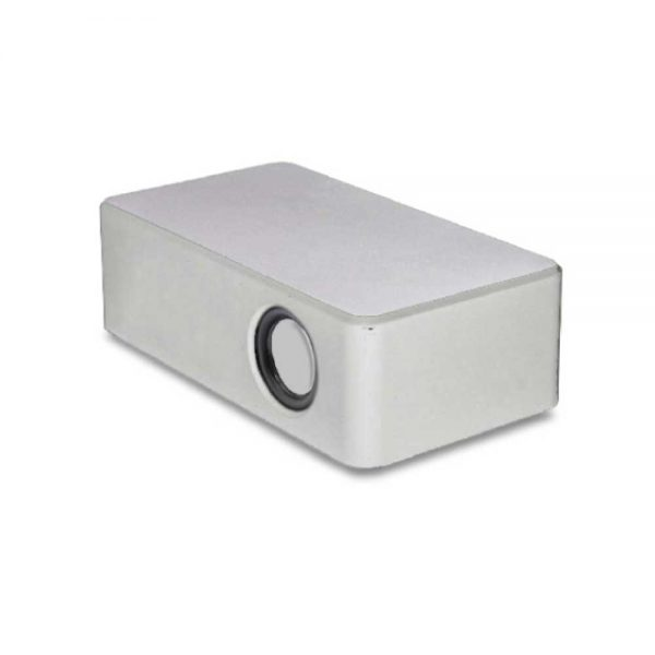 Induction Speakers