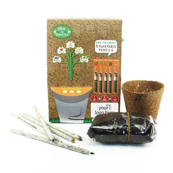 Plant A Pencil Kit